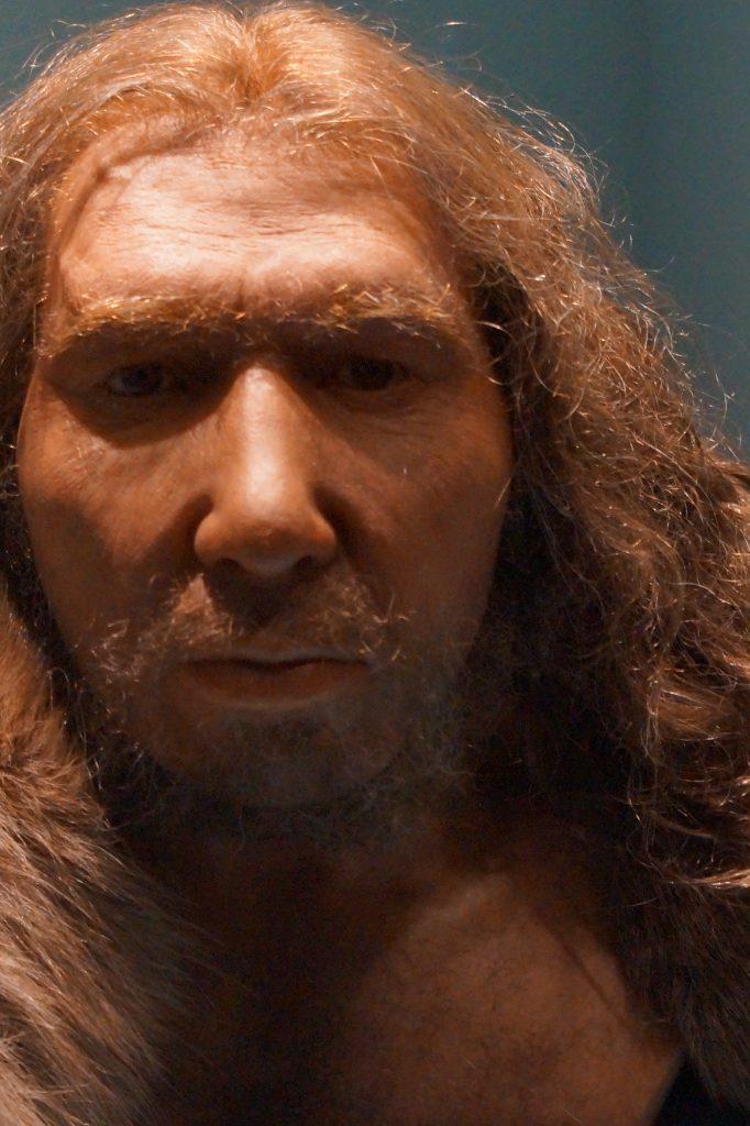 Neandertaler LVR-Landesmuseum Bonn