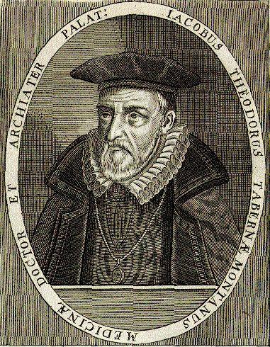 Tabernaemontanus (Jakob Theodor) Arzt - Bad Schwalbach